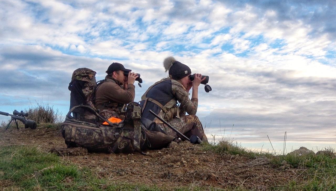 Hunting in NZ